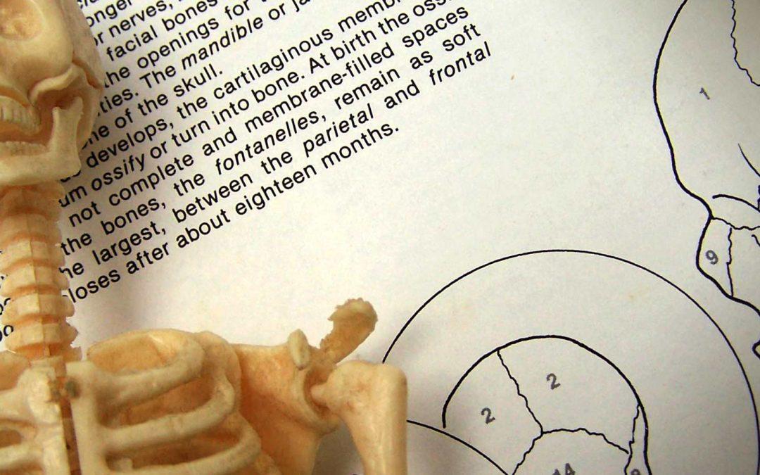 Zdravje kosti