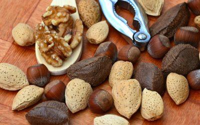 Semena in oreščki
